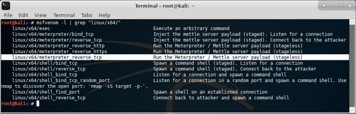 OD_Kali Linux_02_01_2019_11_28_20